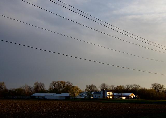 Farm and Light