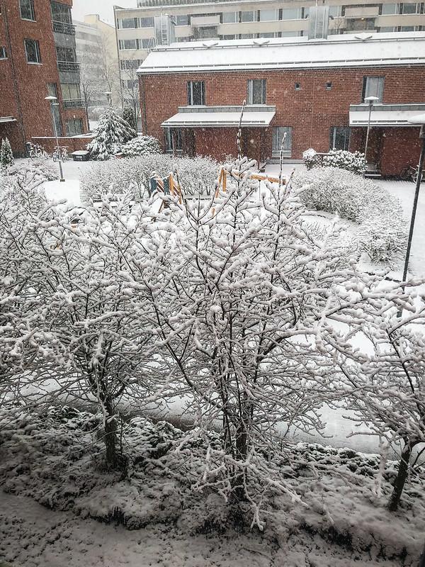 2021w16 Snow surprise
