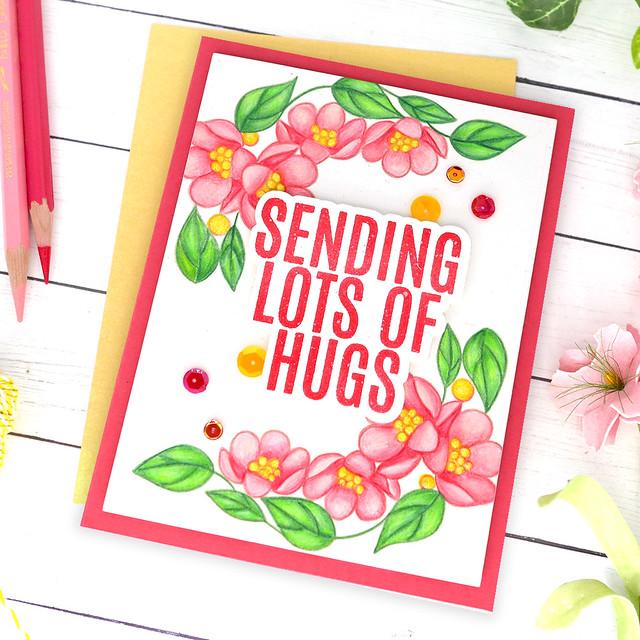 sending lots of hugs 2