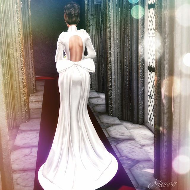 Elie Wedding Dress ~ Rear View