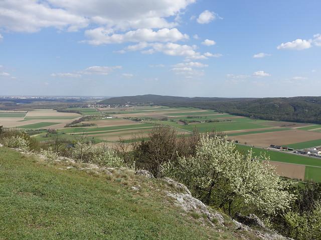 Blick vom Braunsberg