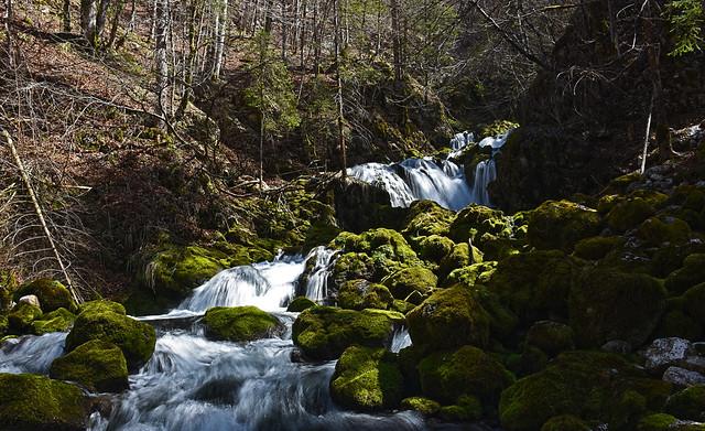 Kropa source in Voje valley