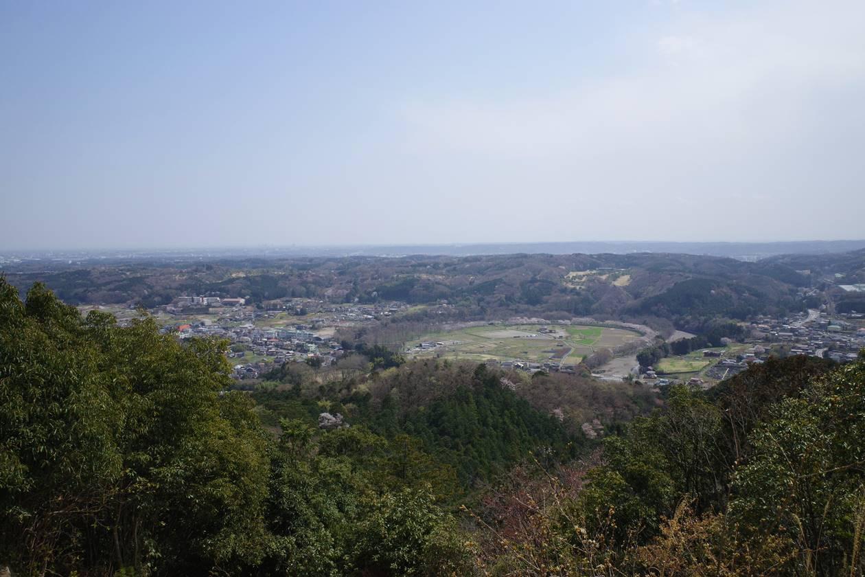 日和田山から眺める巾着田