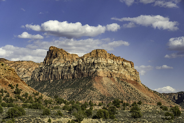 The Watchman and Johnson Mnt. viewed from Springdale