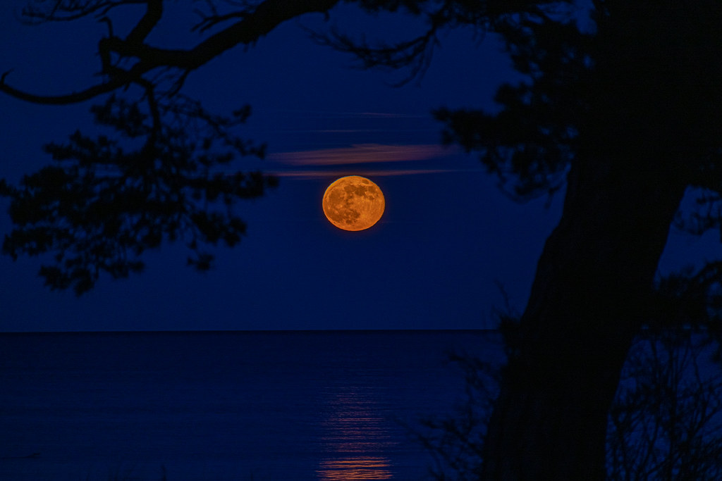 månen moon