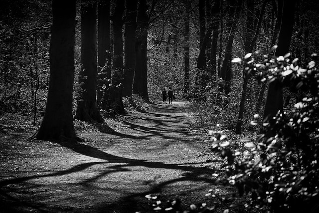 When you LOVE LiGHT! - Follow the path..