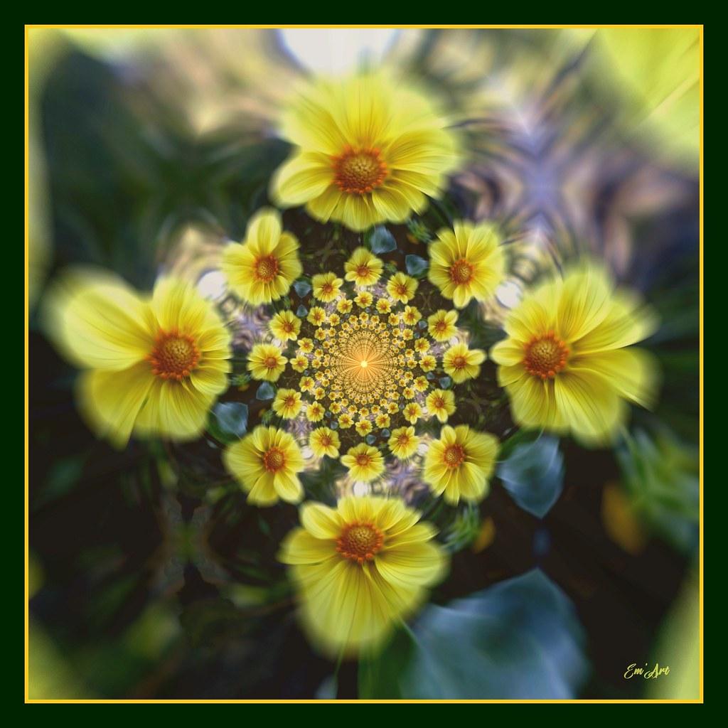 Tourne Solaire - Solar Flower