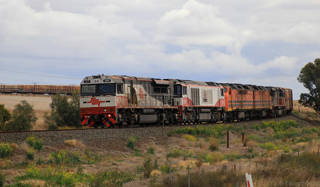 SCT009 CSR009 CLF4 CLF2 and SCT003 quickly get to line speed as they round PM9 into Murtoa