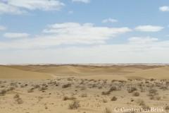Western Sahara - from Dakhla to Laayoune