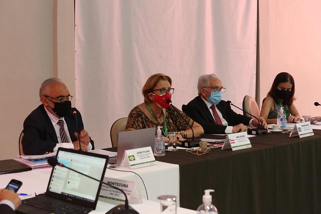 28-04-2021 -  346ª (CCCXLVI) Tricentésima Quadragésima Sexta Sessão Plenária Ordinária do CFMV