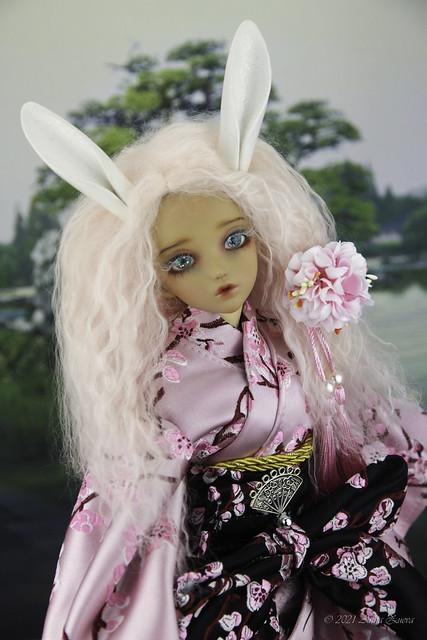 White Rabbit set MSD