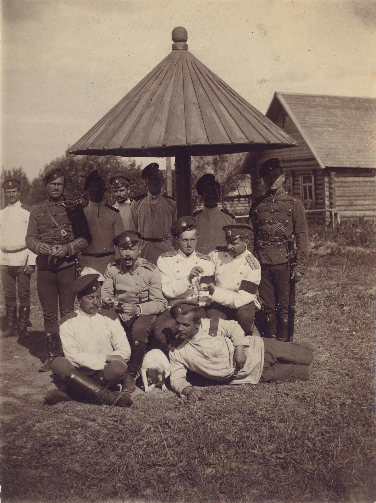1898. Под грибом