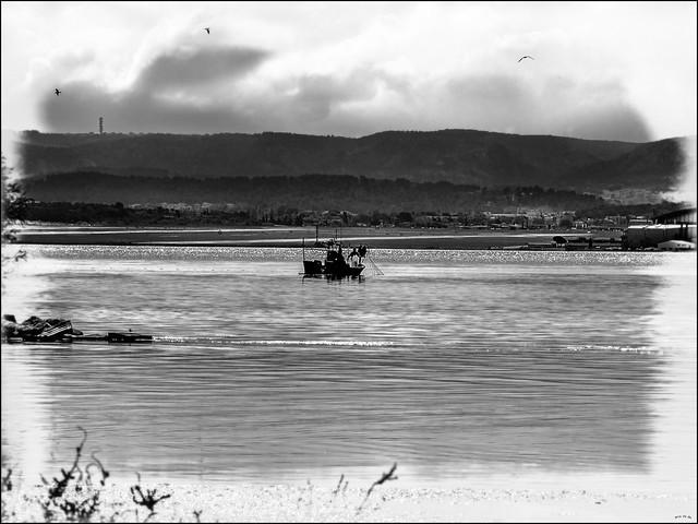 Pêche en eaux troubles.... / Fishing in troubled waters...
