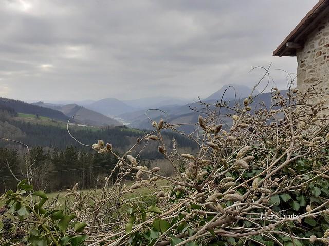 Elkoro baserria, Bergara, Gipuzkoa, 03-2021
