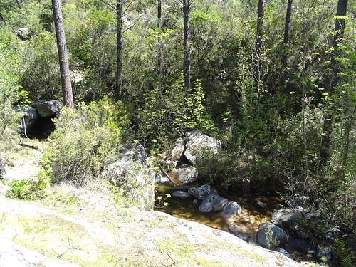 A l'arrivée au ruisseau affluent de Ranedda