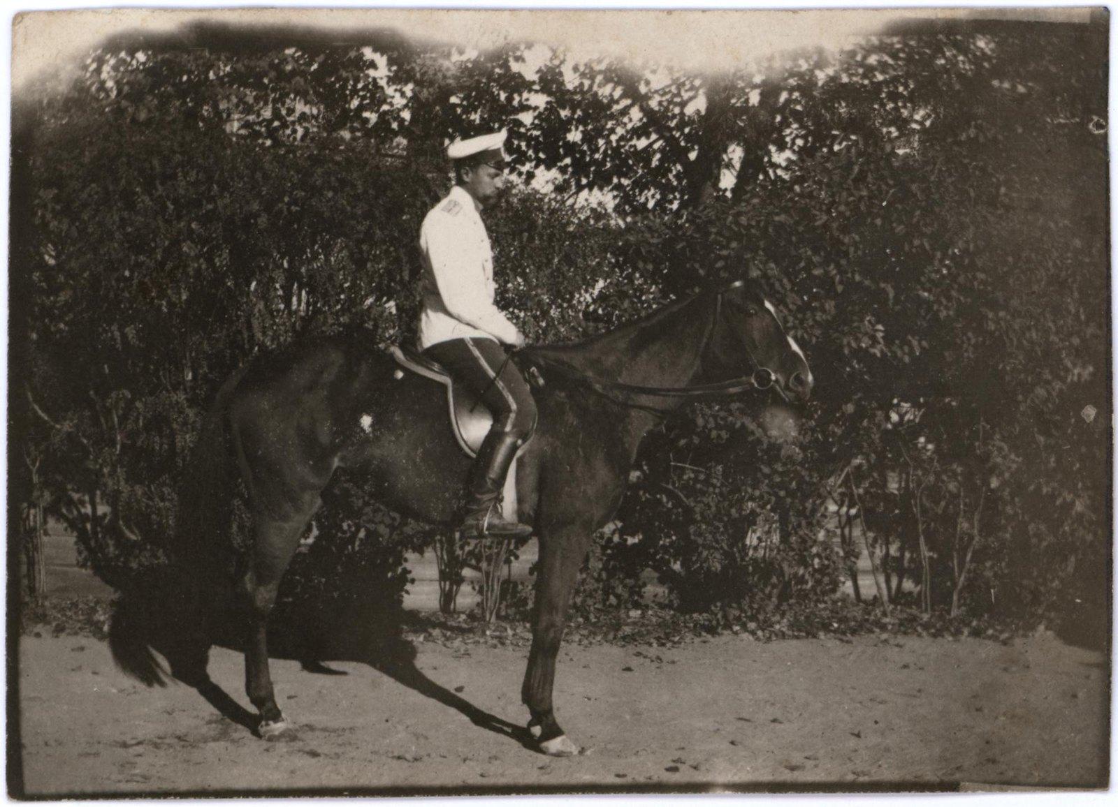 1905. Всадник Греве А.А.