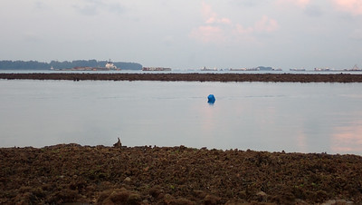 Markers in the water off Pulau Hantu, Apr 2021