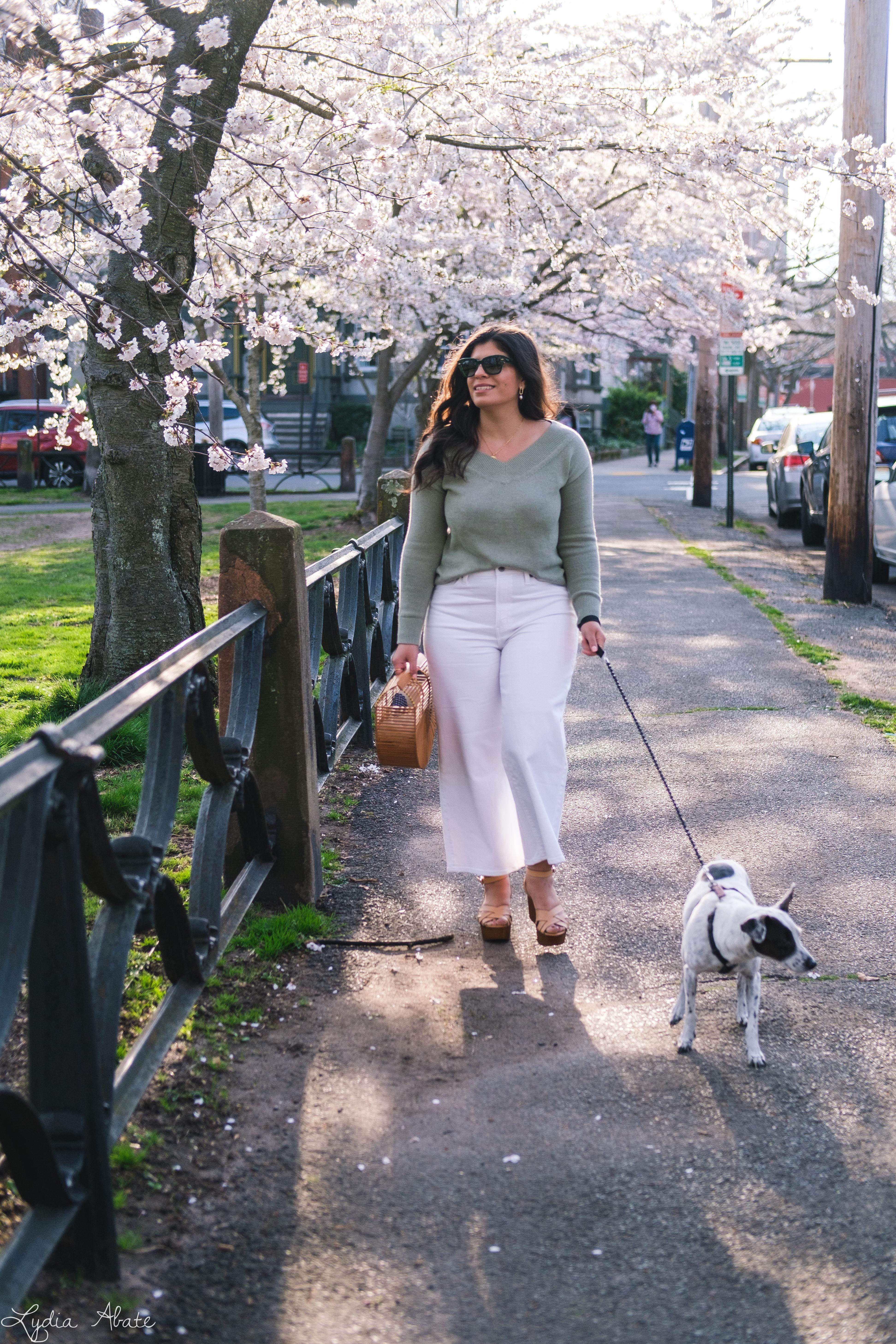 sage green sweater, white wide leg jeans, bamboo bag, dog walking-9.jpg