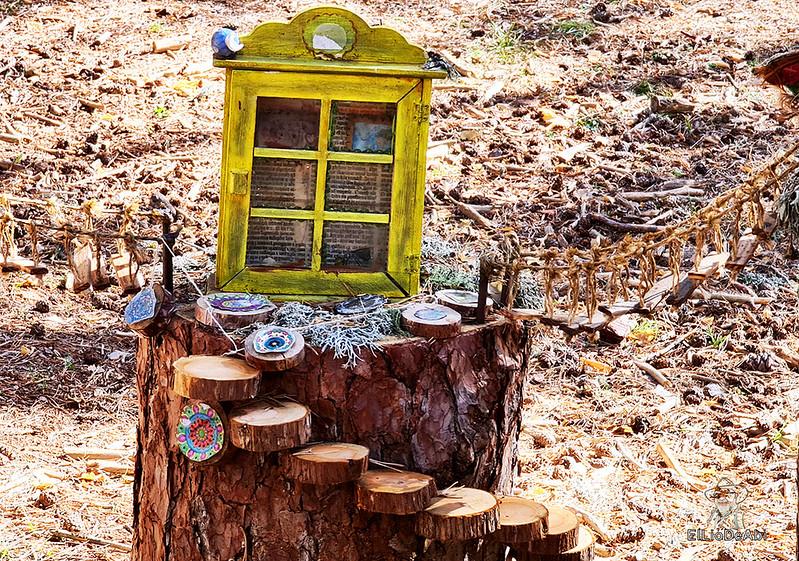 El Bosque Mágico de la Fuente del Pino (31)