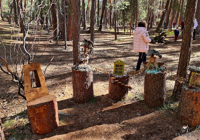 El Bosque Mágico de la Fuente del Pino (30)