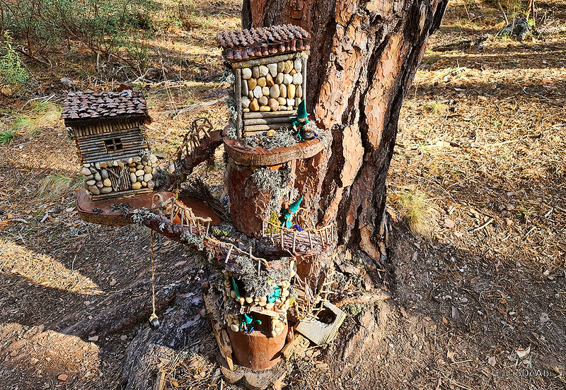 El Bosque Mágico de la Fuente del Pino (13)