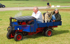 curly42 posted a photo:A little family outing at the South Cerney Show - 4.8.12.