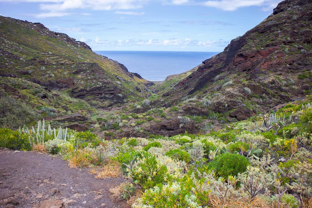 Sendero hacia la costa de Tamadiste