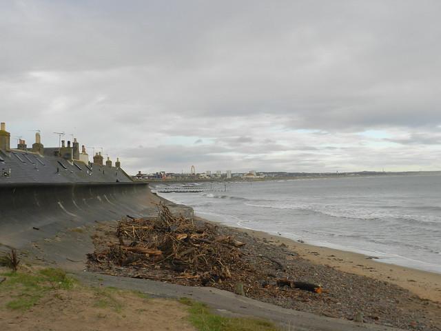 Driftwood, Footdee, Aberdeen, Oct 2020