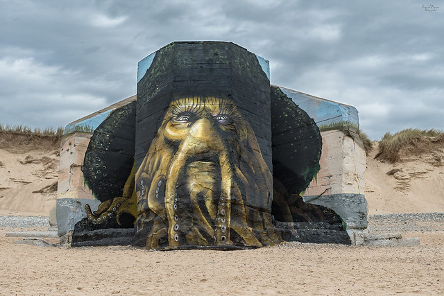 Davy Jones - Blesea_BabyK - Biville (5828)