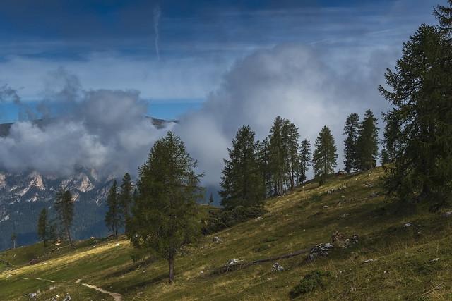 Alto Adige Italia Nature Outdoor sunny day 19092019 756''#