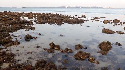 Boat strike at reef edge, Pulau Hantu Apr 2021