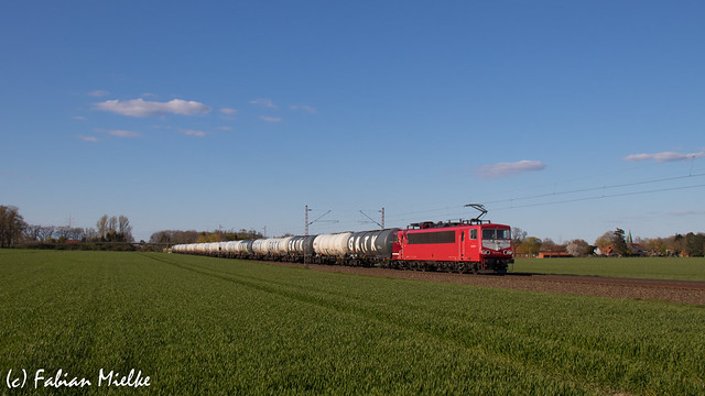 155 219 | Holtorf