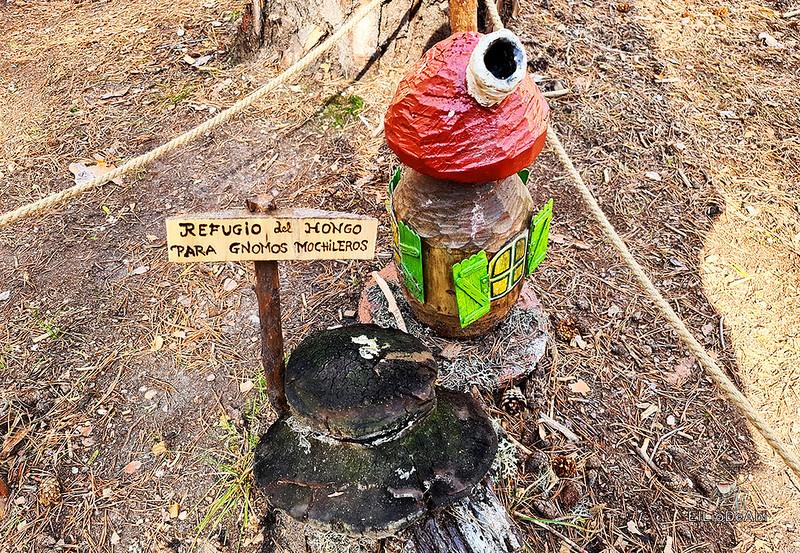 El Bosque Mágico de la Fuente del Pino (34)