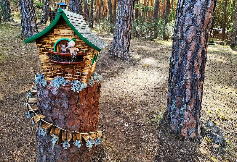 El Bosque Mágico de la Fuente del Pino (17)