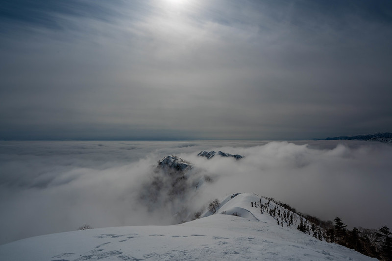 内陸方面は雲海