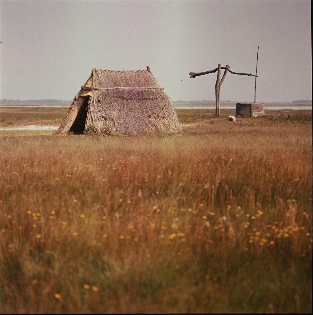 13. Хижина на болотистой земле в федеральной земле Бургерланд