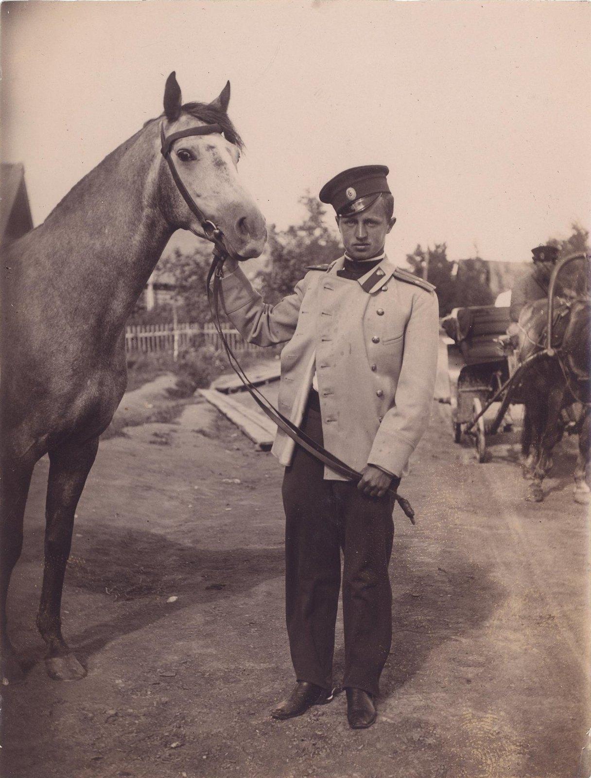 1898. Корнет Греве