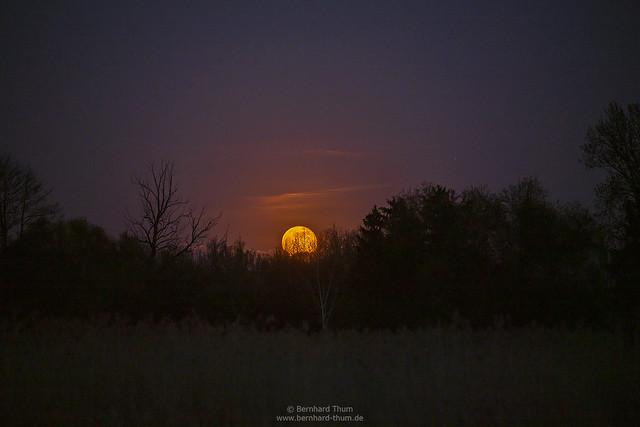 Full moon rising at Ampertal N°2