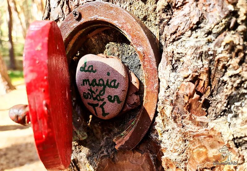 El Bosque Mágico de la Fuente del Pino (38)