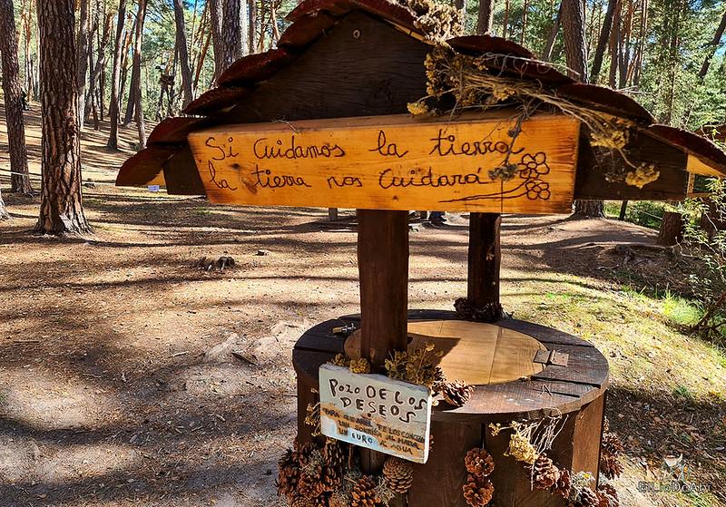 El Bosque Mágico de la Fuente del Pino (33)