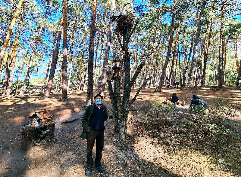 El Bosque Mágico de la Fuente del Pino (23)