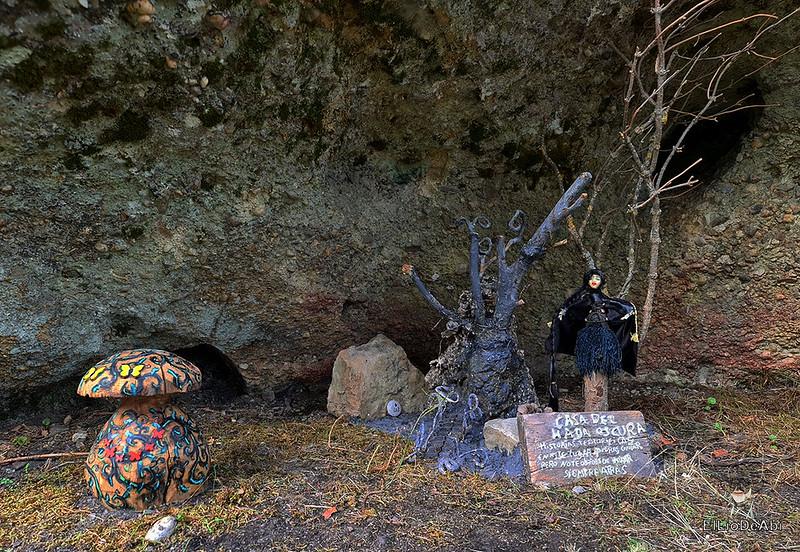 El Bosque Mágico de la Fuente del Pino (6)
