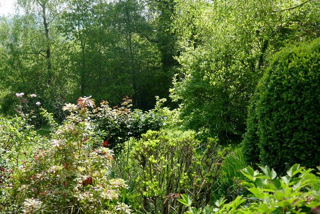 Au jardin, royaume du vert, Bosdarros, Béarn, Pyrénées Atlantiques, Nouvelle-Aquitaine, France.