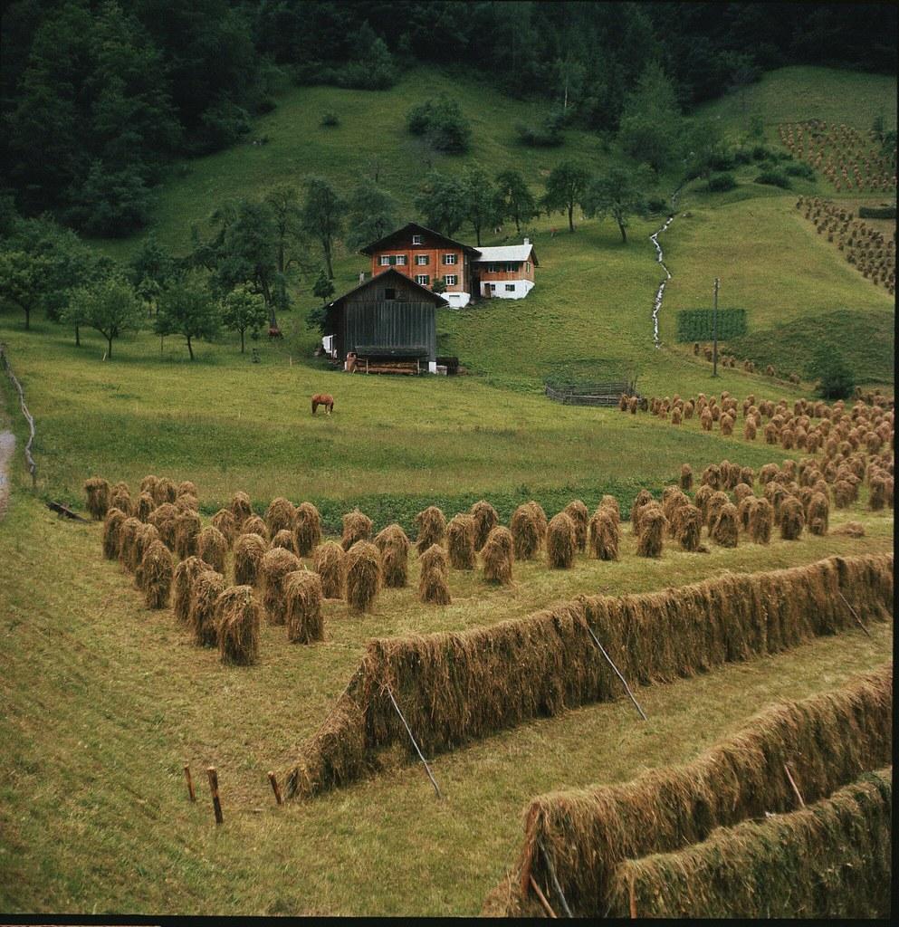 12. Сельскохозяйственные угодья в федеральной земле Форарльберг