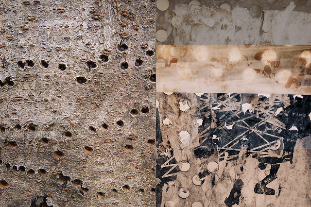 Abstract diptych combining the texture of tree bark with holes drilled into it alongside a perforated steel garbage can with plastic top and decrepit posters stuck to it