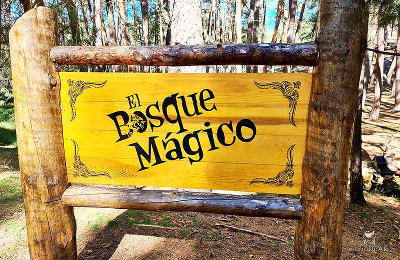 El Bosque Mágico de la Fuente del Pino 2