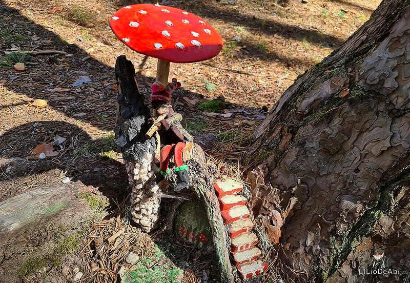 El Bosque Mágico de la Fuente del Pino (41)