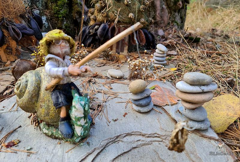 El Bosque Mágico de la Fuente del Pino (4)