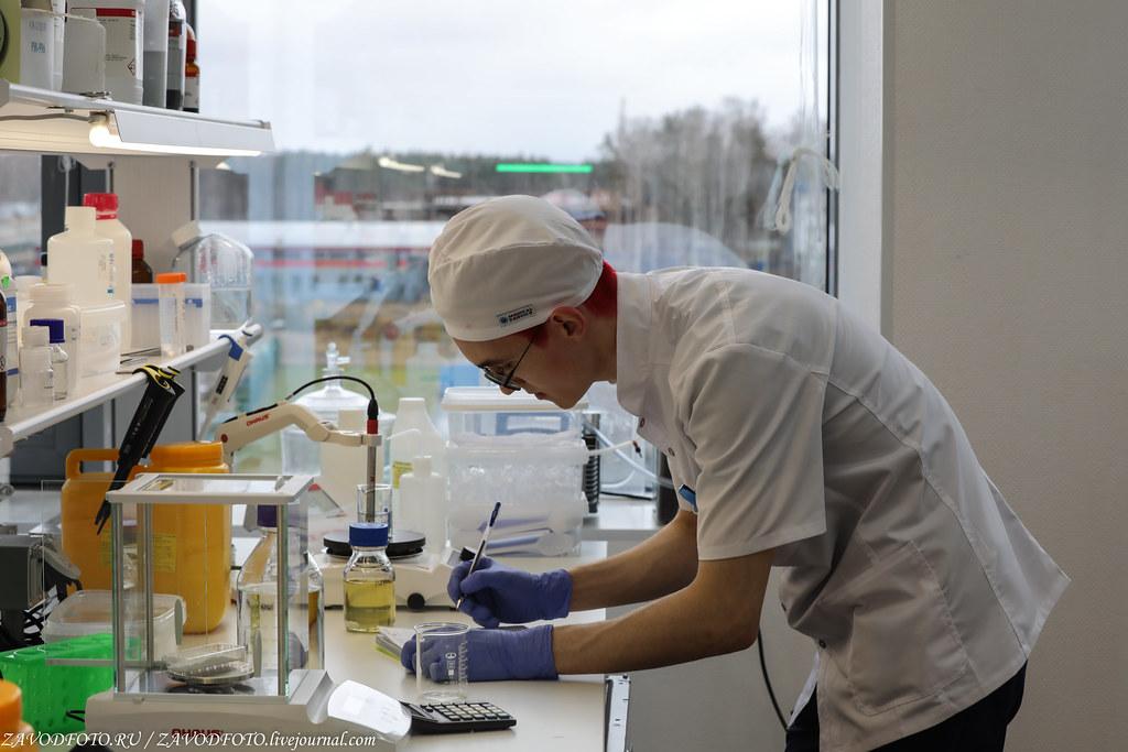 Как биотехнологическая компания «БиоПалитра» удивила весь мир 999A1556