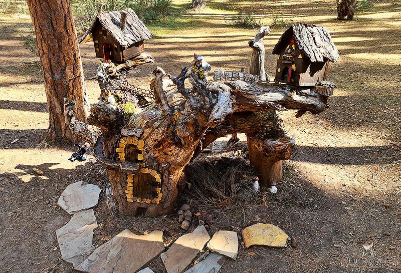 El Bosque Mágico de la Fuente del Pino (25)